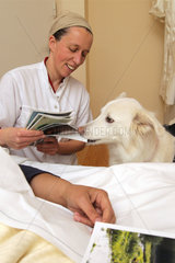 Flensburg  Deutschland  Therapiehund im Hospiz