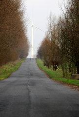 Alt Bukow  Landstrasse mit einem Windrad im Hintergrund