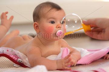 Kappeln  Deutschland  Delfi-Kurs mit Kleinkindern