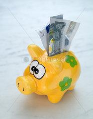 Hamburg  Sparschwein mit Euroschein