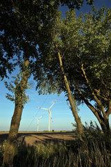 Galmsbuell  Deutschland  Windkraftanlagen auf Feldern
