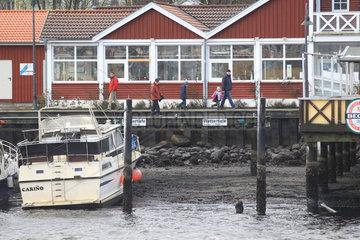 Flensburg  Deutschland  der Orkan Xaver sorgt im Flensburger Hafen fuer Niedrigwasser