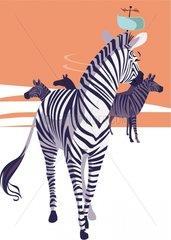 Typ Zebra