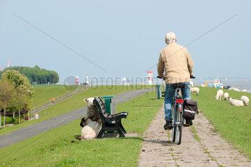 Brunsbuettel  Deutschland  Radfahrer auf dem Elbdeich