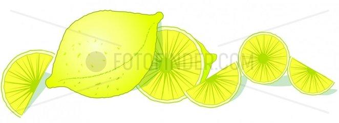Zitronen Querformat