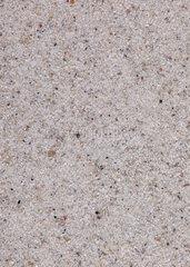 Sandprobe aus Bad Damp  Ostsee