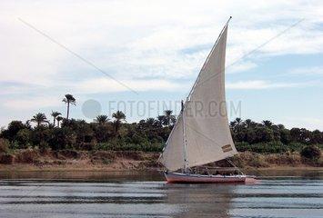 _gypten Nil Felluke