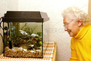 Nauen  eine alte Frau sieht in ein Aquarium