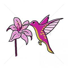 Kolibri Vogelart Bluete grafisch freigestellt lila