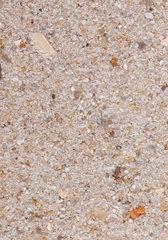 Sandprobe aus Hoernum  Sylt  Deutschland