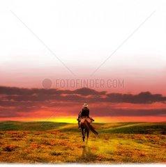 Western Reiter von hinten Sonnenuntergang