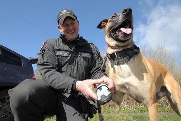 Eggebek  Deutschland  Training von Polizeihunden