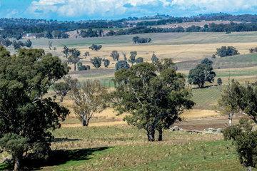 Landschaft im Outback