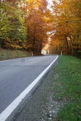 Herbstliche Landstrasse in Bayern