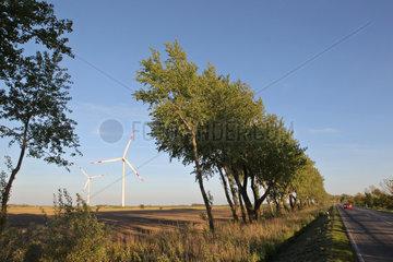 Galmsbuell  Deutschland  Windkraftanlagen auf Feldern hinter einer Landstrasse