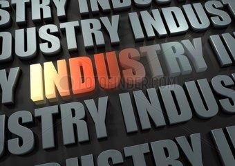 Schriftzug Industry