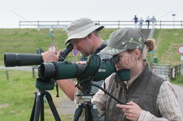 Reussenkoege  Deutschland  Vogelzaehlung am Beltringharder Koog