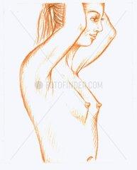 Formen der weiblichen Brust 1