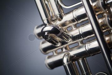Die Pumpenventile einer Trompete