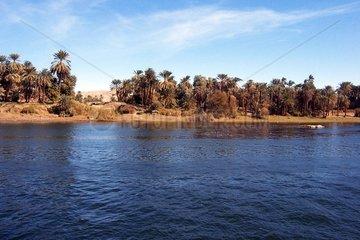 Nil Wuestenufer Aegypten