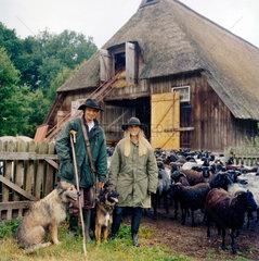 Lueneburger Heide  Deutschland  Schaefer mit Heidschnucken und Huetehunden
