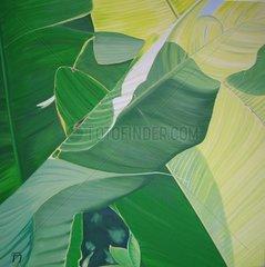Bananenblatt