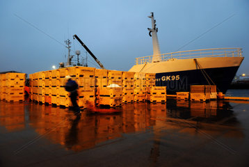 Island: Fischmarkt