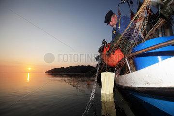 Flensburg  Deutschland  Nebenerwerbsfischer holt am fruehen Morgen in der Flensburger Foerde die Netzte ein