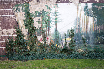 Mauerbild mit Efeu