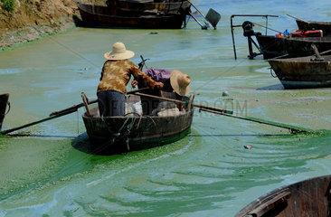 China  Kampf gegen Algen in der Anhui Provinz
