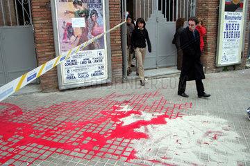 Stierkampf-Protest in Spanien