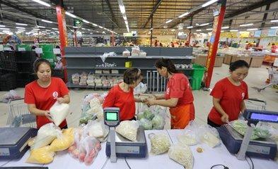#CHINA-HENAN-JIAOZUO-WOMEN EMPLOYMENT(CN)