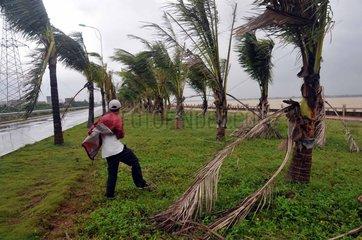 China  Haikou Taifun Kestana