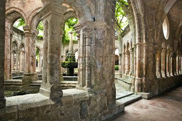Abbaye de Valmagne  Languedoc-Roussillon  France