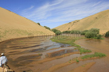 Duene Bor Khar Els in der Mongolei