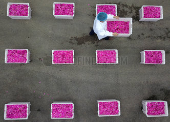 Xinhua Headlines: Chinese economy powering ahead  fulfilling 2018 targets
