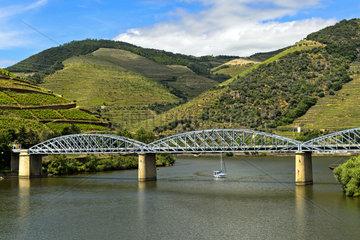 Eiserne Strassenbruecke ueber den Douro Fluss  Pinhao  Douro Tal  Portugal