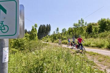 Radler auf dem Schwarzwald Panorama Radweg