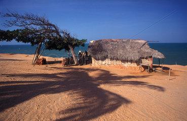 Sonnendurchflutete Huette an der brasilianischen Kueste