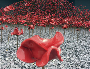 Poppy sculpture  Imperial War Museum  Manchester