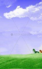 Wiesen Baeume Freiflaeche Weite Wolkenhimmel Fruehling Bergauf