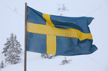 Saelen  Schweden  Nationalfahne von Schweden weht im Wind