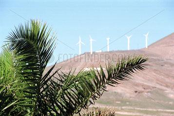 Lanzarote  Spanien  natuerliche Ressourcen auf Kanaren