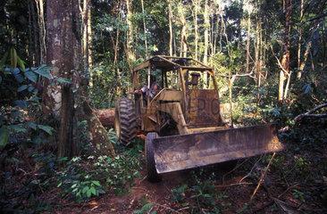 Traktor im brasilianischen Urwald