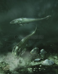 A pair of armored fish swimming in Devonian waters.