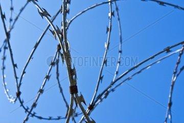 Stacheldraht an einem Zaun