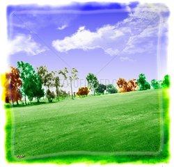 Umweltgift Natur Pestizide Spritzmittel Rasen Baeume Golfplatz