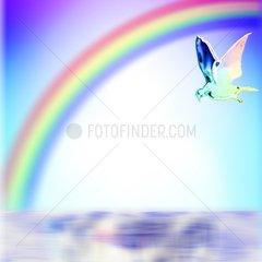 Oase Regenbogen Paradies Taube Friedenstaube Frieden