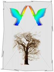 Baum Friedenstauben Schutz Umweltschutz