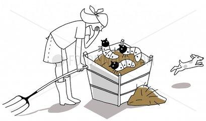 Maden Kompost